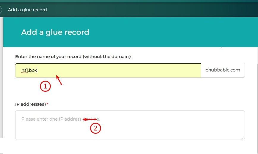 Adding Glue Records in Gandi Dashboard