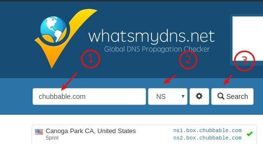 Reference Image: DNS Propagation Check Tool